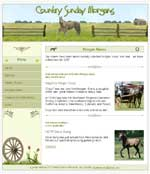 Country Sunday Morgans - Web Development
